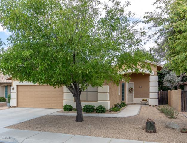 8974 W Runion Drive, Peoria, AZ 85382 (MLS #5912117) :: The Results Group
