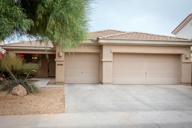 2927 N 140TH Drive, Goodyear, AZ 85395 (MLS #5912123) :: Kortright Group - West USA Realty