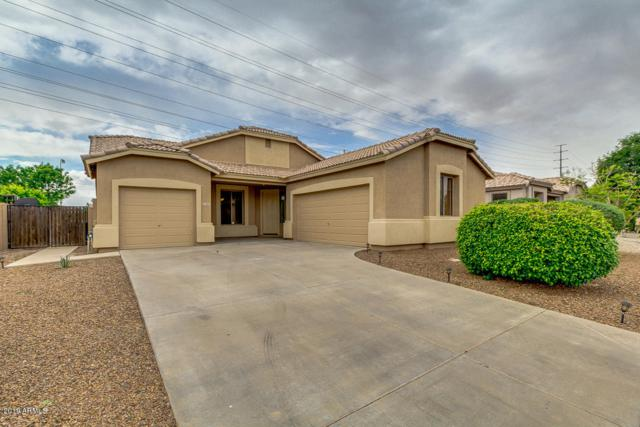 1605 E Aloe Place, Chandler, AZ 85286 (MLS #5912156) :: Occasio Realty