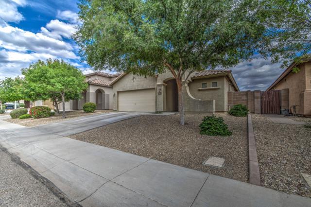 18014 W Carol Avenue, Waddell, AZ 85355 (MLS #5912159) :: Yost Realty Group at RE/MAX Casa Grande