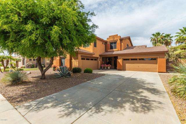 1536 E Del Rio Street, Gilbert, AZ 85295 (MLS #5912165) :: Revelation Real Estate