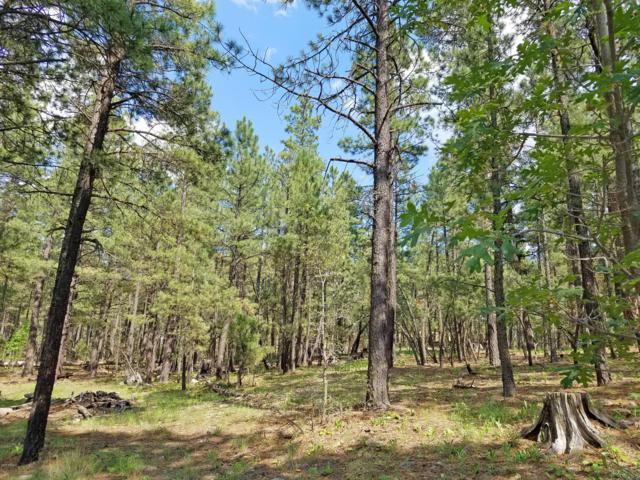 TBD County Rd 2086, Alpine, AZ 85920 (MLS #5912221) :: Revelation Real Estate