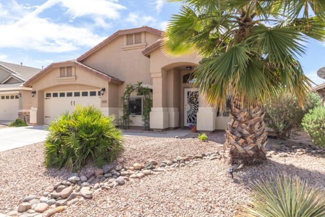 40761 W Coltin Way, Maricopa, AZ 85138 (MLS #5912224) :: Yost Realty Group at RE/MAX Casa Grande