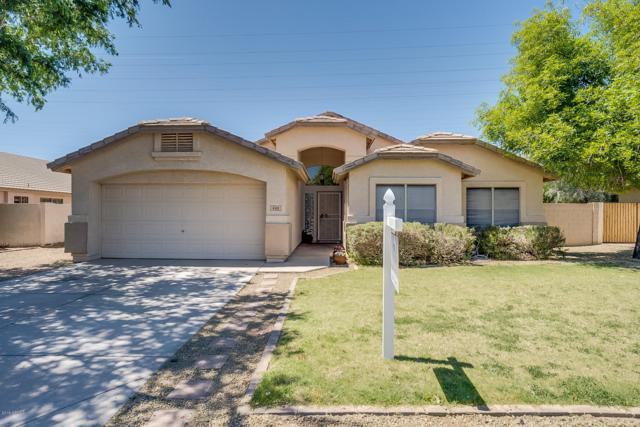 446 S Coronado Road, Gilbert, AZ 85296 (MLS #5912236) :: Yost Realty Group at RE/MAX Casa Grande