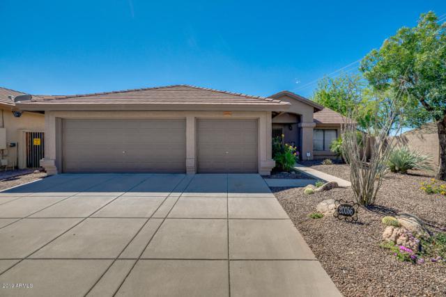 20056 N 21ST Street, Phoenix, AZ 85024 (MLS #5912241) :: Arizona 1 Real Estate Team