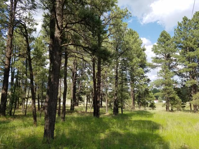 000 Cr 2086, Alpine, AZ 85920 (MLS #5912251) :: Revelation Real Estate