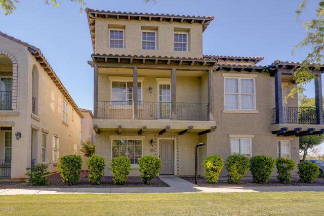 3620 E Horace Drive, Gilbert, AZ 85296 (MLS #5912271) :: Yost Realty Group at RE/MAX Casa Grande