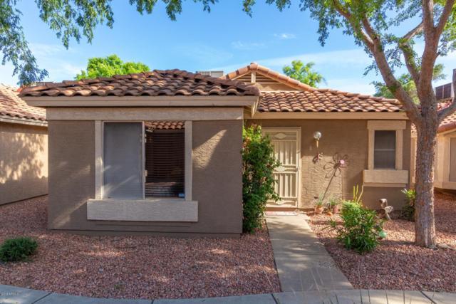 7040 W Olive Avenue #8, Peoria, AZ 85345 (MLS #5912282) :: CC & Co. Real Estate Team