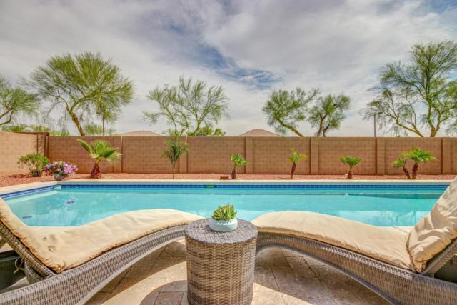 4553 N 154TH Avenue, Goodyear, AZ 85395 (MLS #5912317) :: Occasio Realty