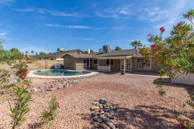 12012 S Pewaukee Street, Phoenix, AZ 85044 (MLS #5912329) :: Yost Realty Group at RE/MAX Casa Grande