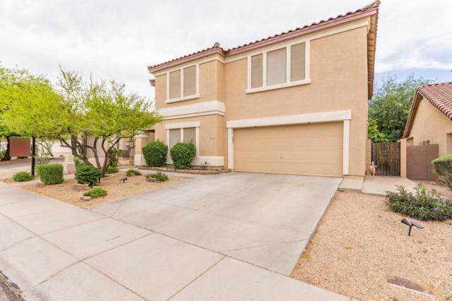 4115 E Tether Trail, Phoenix, AZ 85050 (MLS #5912331) :: Riddle Realty