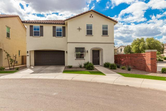 2200 S Jacana Court, Gilbert, AZ 85295 (MLS #5912334) :: Devor Real Estate Associates