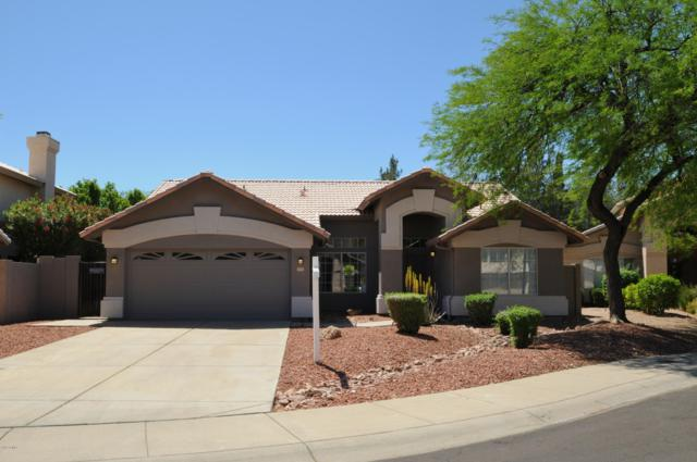 5715 W Blackhawk Drive, Glendale, AZ 85308 (MLS #5912410) :: Cindy & Co at My Home Group