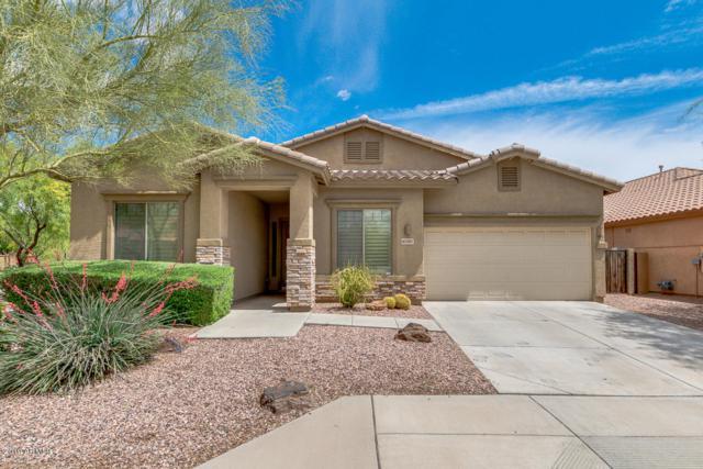 42207 N 45TH Drive, Phoenix, AZ 85086 (MLS #5912455) :: Yost Realty Group at RE/MAX Casa Grande