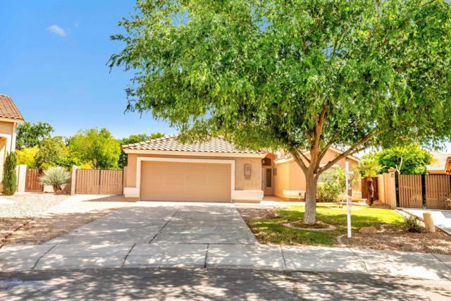 1182 E Jasper Drive, Gilbert, AZ 85296 (MLS #5912473) :: Yost Realty Group at RE/MAX Casa Grande