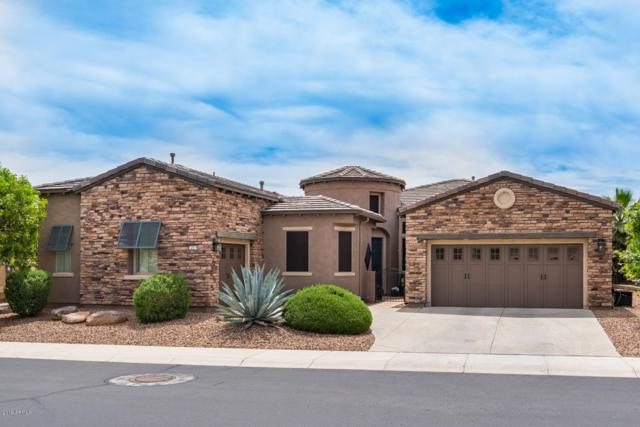 12519 W Bajada Road, Peoria, AZ 85383 (MLS #5912479) :: Power Realty Group Model Home Center