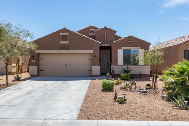 4885 E Iolite Street, San Tan Valley, AZ 85143 (MLS #5912521) :: Power Realty Group Model Home Center