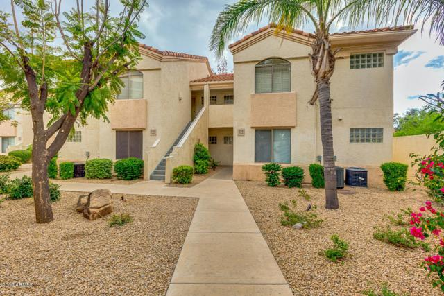 5249 E Shea Boulevard #104, Scottsdale, AZ 85254 (MLS #5912526) :: Homehelper Consultants