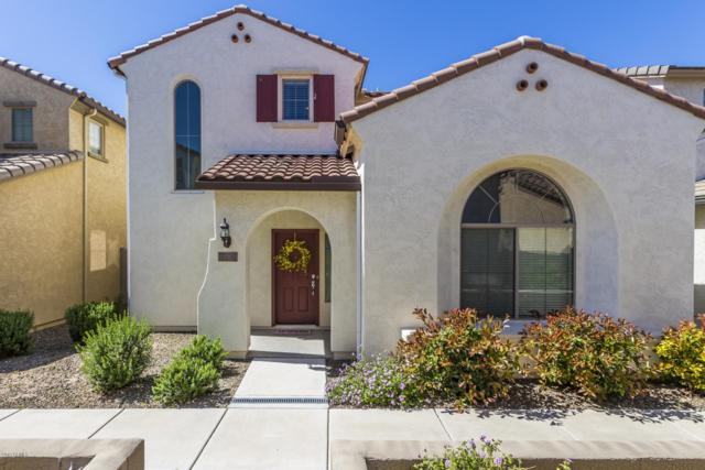 26720 N 53RD Lane, Phoenix, AZ 85083 (MLS #5912531) :: Yost Realty Group at RE/MAX Casa Grande