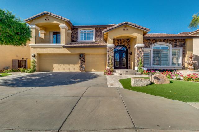 13318 W Solano Drive, Litchfield Park, AZ 85340 (MLS #5912547) :: Riddle Realty