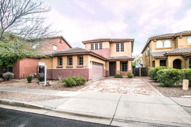 3033 S Joshua Tree Lane, Gilbert, AZ 85295 (MLS #5912559) :: Yost Realty Group at RE/MAX Casa Grande