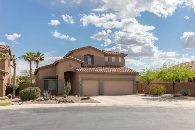 977 E Libra Place, Chandler, AZ 85249 (MLS #5912614) :: Yost Realty Group at RE/MAX Casa Grande