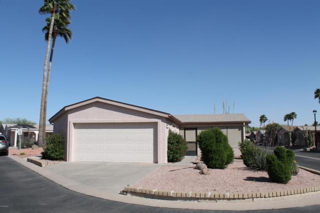 1952 E Torrey Pines Lane, Chandler, AZ 85249 (MLS #5912639) :: Power Realty Group Model Home Center