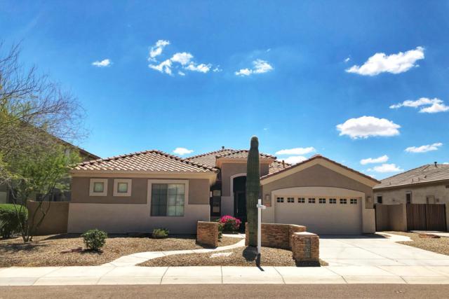 8357 W Alyssa Lane, Peoria, AZ 85383 (MLS #5912678) :: Occasio Realty