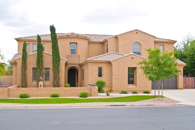 20297 E Poco Calle, Queen Creek, AZ 85142 (MLS #5912700) :: Occasio Realty