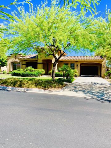 20780 W Lost Creek Drive, Buckeye, AZ 85396 (MLS #5912711) :: The Garcia Group