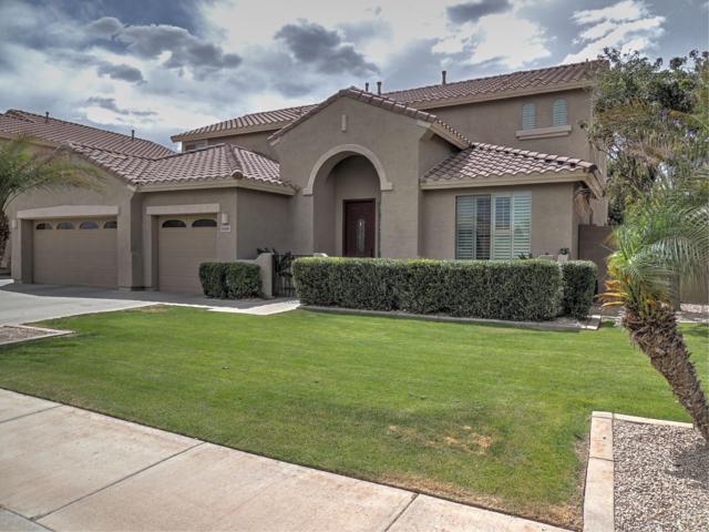 6680 S Nash Way, Chandler, AZ 85249 (MLS #5912733) :: Yost Realty Group at RE/MAX Casa Grande
