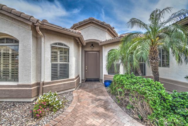 3549 N 149TH Avenue, Goodyear, AZ 85395 (MLS #5912747) :: Yost Realty Group at RE/MAX Casa Grande