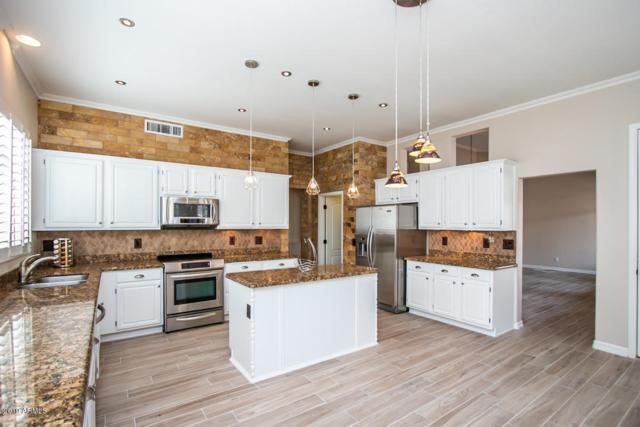 2702 E Amberwood Drive, Phoenix, AZ 85048 (MLS #5912791) :: Power Realty Group Model Home Center