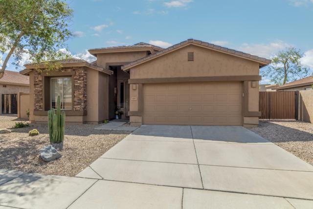 6207 W Wikieup Lane, Glendale, AZ 85308 (MLS #5912800) :: Occasio Realty