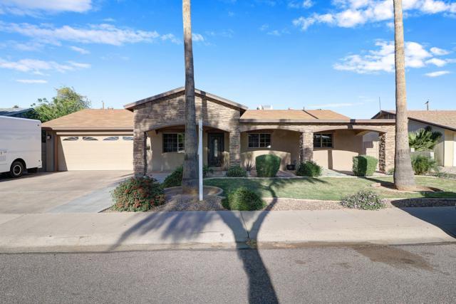8252 N 35th Avenue, Phoenix, AZ 85051 (MLS #5912808) :: Yost Realty Group at RE/MAX Casa Grande