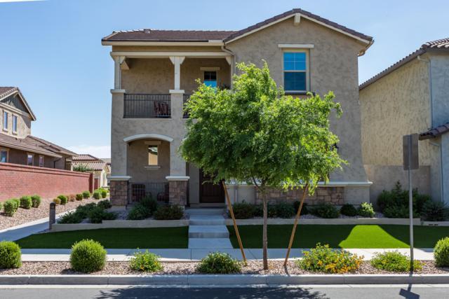 2143 S Wade Drive, Gilbert, AZ 85295 (MLS #5912823) :: Power Realty Group Model Home Center