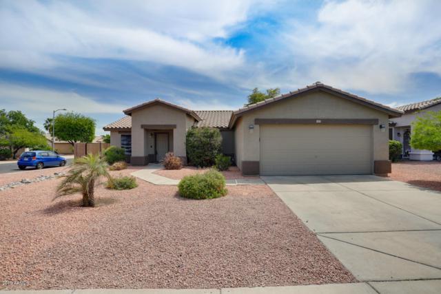 14919 N 150TH Lane, Surprise, AZ 85379 (MLS #5912889) :: Occasio Realty