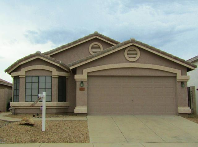 20411 N 37TH Avenue, Glendale, AZ 85308 (MLS #5912911) :: The Everest Team at My Home Group