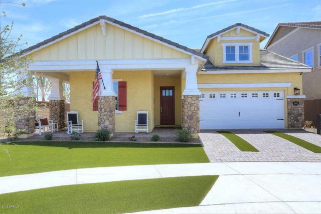 10560 E Nido Avenue, Mesa, AZ 85209 (MLS #5912920) :: Yost Realty Group at RE/MAX Casa Grande