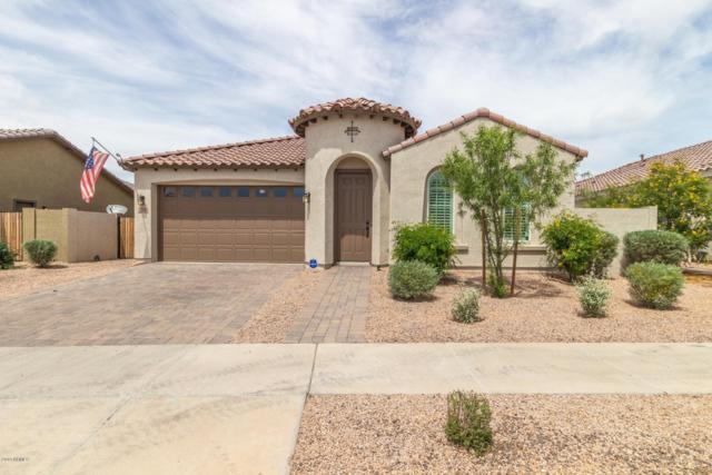 22218 E Cherrywood Drive, Queen Creek, AZ 85142 (MLS #5912932) :: Power Realty Group Model Home Center