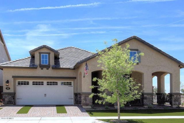 10566 E Nido Avenue, Mesa, AZ 85209 (MLS #5912937) :: Yost Realty Group at RE/MAX Casa Grande
