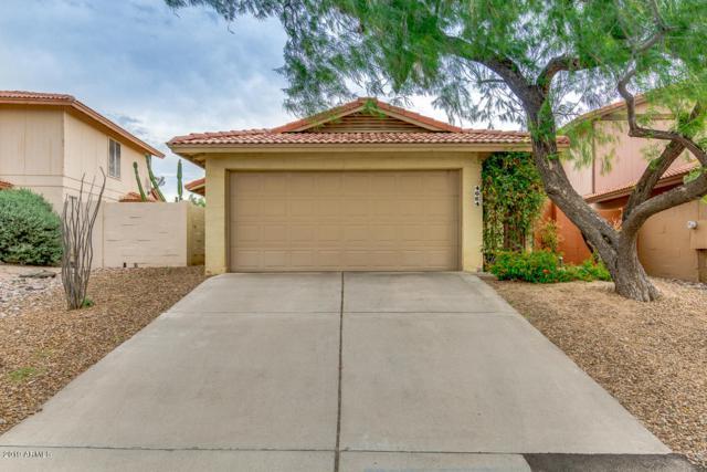 4664 E Piedmont Road, Phoenix, AZ 85044 (MLS #5912952) :: CANAM Realty Group
