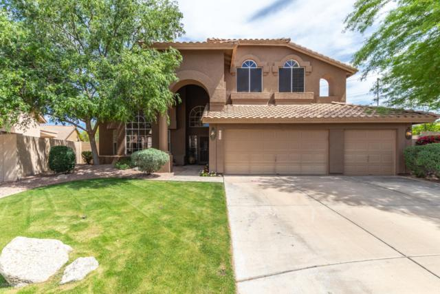 6760 E Venue Street, Mesa, AZ 85215 (MLS #5912969) :: Power Realty Group Model Home Center