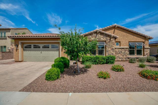 18482 W Rimrock Street, Surprise, AZ 85388 (MLS #5912974) :: Occasio Realty