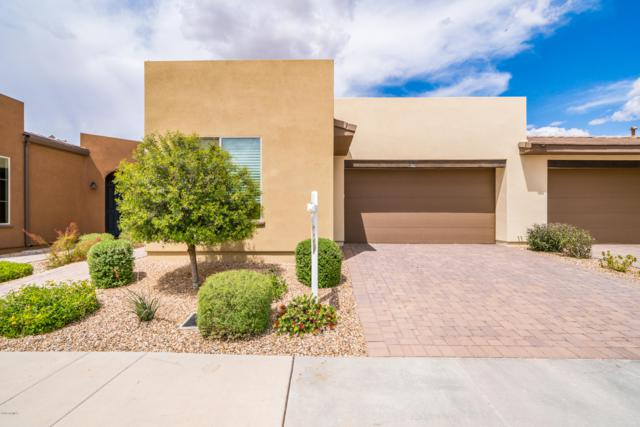 738 E Verde Boulevard, San Tan Valley, AZ 85140 (MLS #5912998) :: CC & Co. Real Estate Team