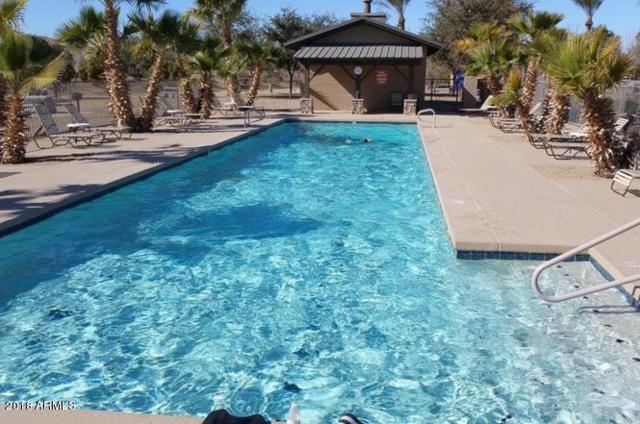 20909 N Sansom Drive, Maricopa, AZ 85138 (MLS #5913002) :: Yost Realty Group at RE/MAX Casa Grande