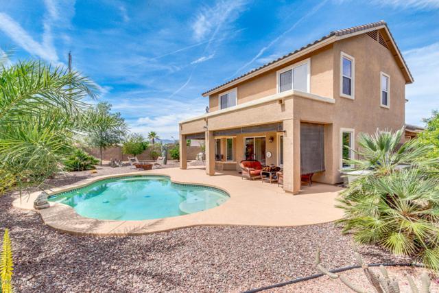 41391 W Cahill Drive, Maricopa, AZ 85138 (MLS #5913027) :: Yost Realty Group at RE/MAX Casa Grande