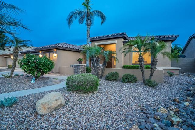 2435 W Weatherby Way, Chandler, AZ 85286 (MLS #5913031) :: Power Realty Group Model Home Center