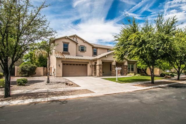 6236 S Rochester Drive, Gilbert, AZ 85298 (MLS #5913037) :: Riddle Realty