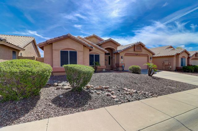 15113 N 85TH Avenue, Peoria, AZ 85381 (MLS #5913044) :: Power Realty Group Model Home Center
